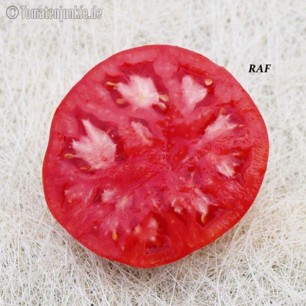 Tomatensorte RAF