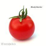 Tomatensorte Bloody Butcher