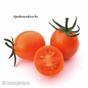 Tomatensorte Aprikosenkirsche