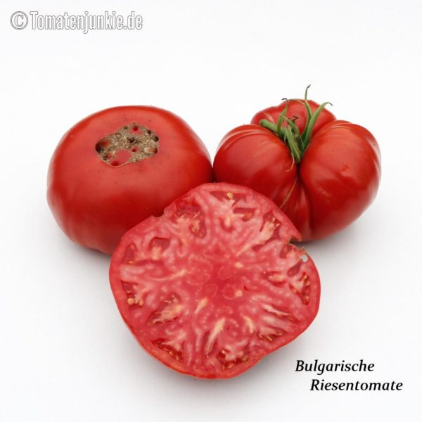 Tomatensorte Bulgarische Riesentomate