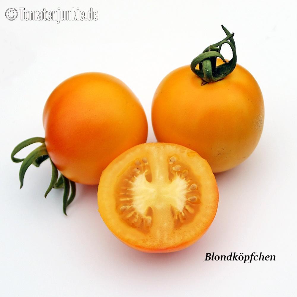 Tomatensorte Blondköpfchen