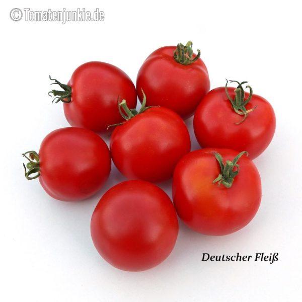 Tomatensorte Deutscher Fleiß