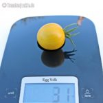 Tomatensorte Egg Yolk