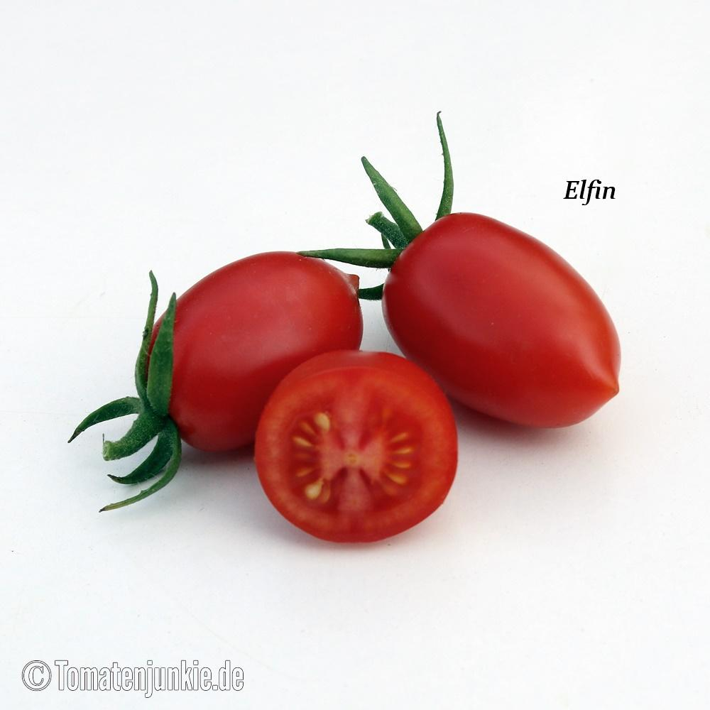 Tomatensorte Elfin