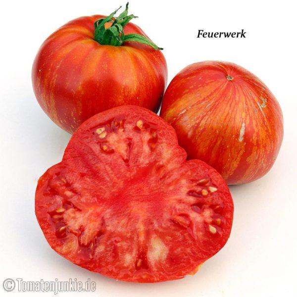 Tomatensorte Feuerwerk