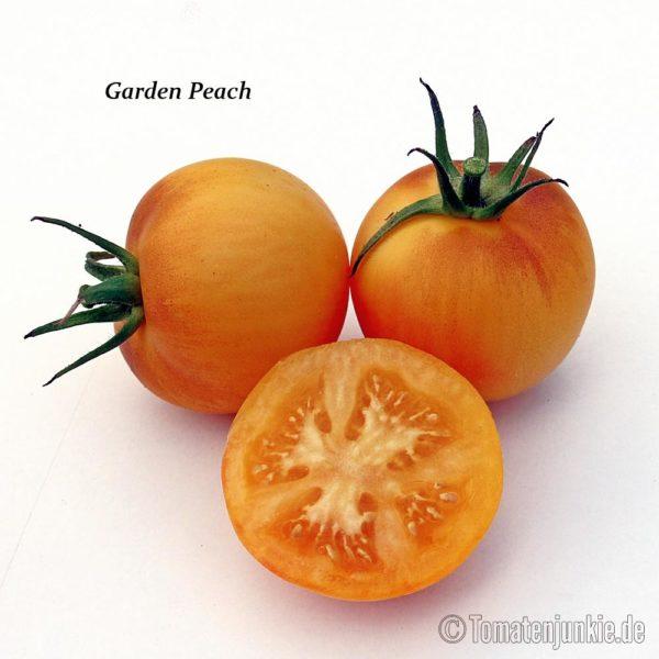 Tomatensorte Garden Peach