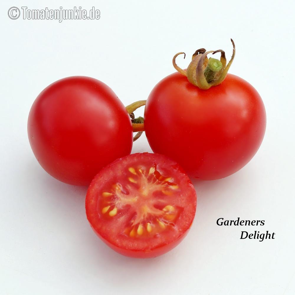 Tomatensorte Gardeners Delight