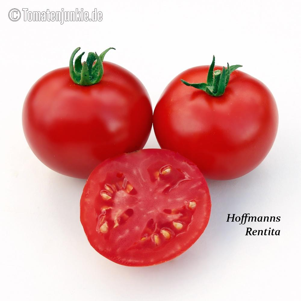 Tomatensorte Hoffmanns Rentita