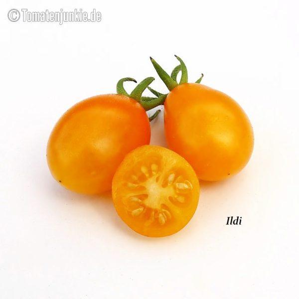 Tomatensorte Ildi