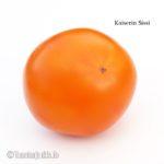 Tomatensorte Kaiserin Sissi