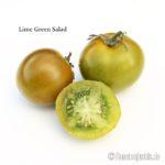 Tomatensorte Lime Green Salad