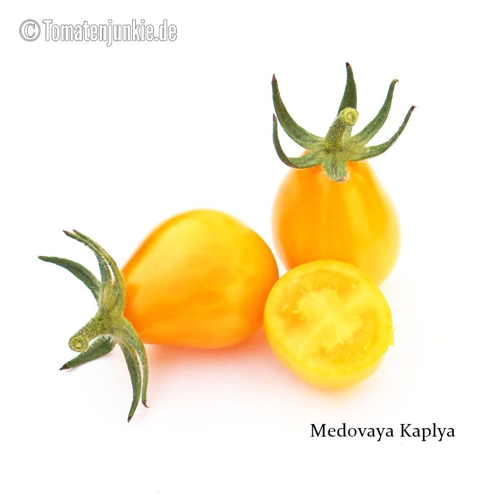 Tomatensorte Medovaya Kaplya