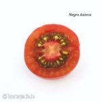 Tomatensorte Negro Azteca