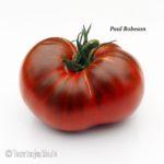 Paul Robeson Fleischtomate