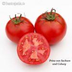 Tomatensorte Prinz von Sachsen & Coburg