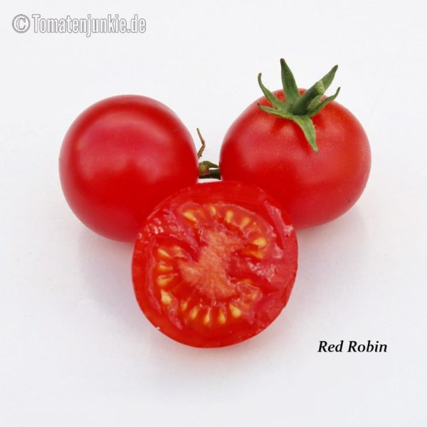 Tomatensorte Red Robin