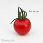 Tomatensorte Rosii Marunte
