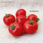 Tomatensorte Rotkäppchen