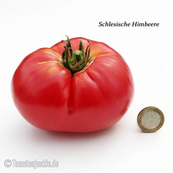 Tomatensorte Schlesische Himbeere