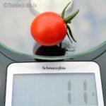 Tomatensorte Schmatzefein