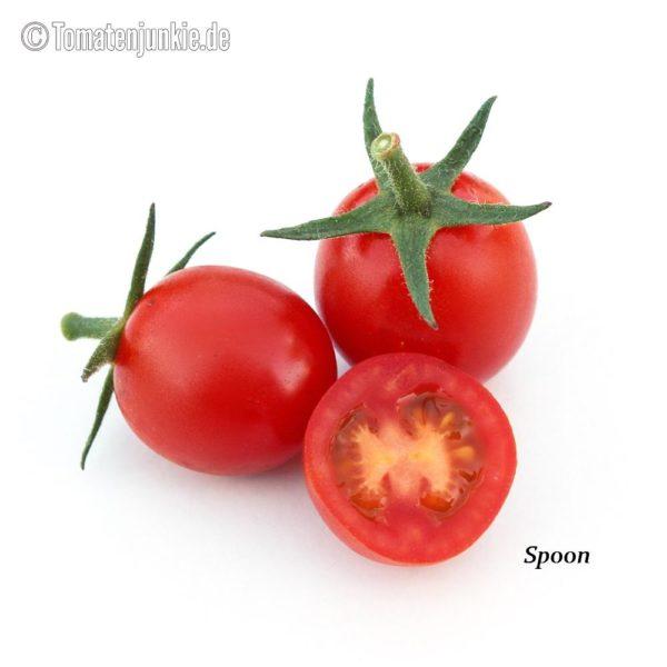 Tomatensorte Spoon