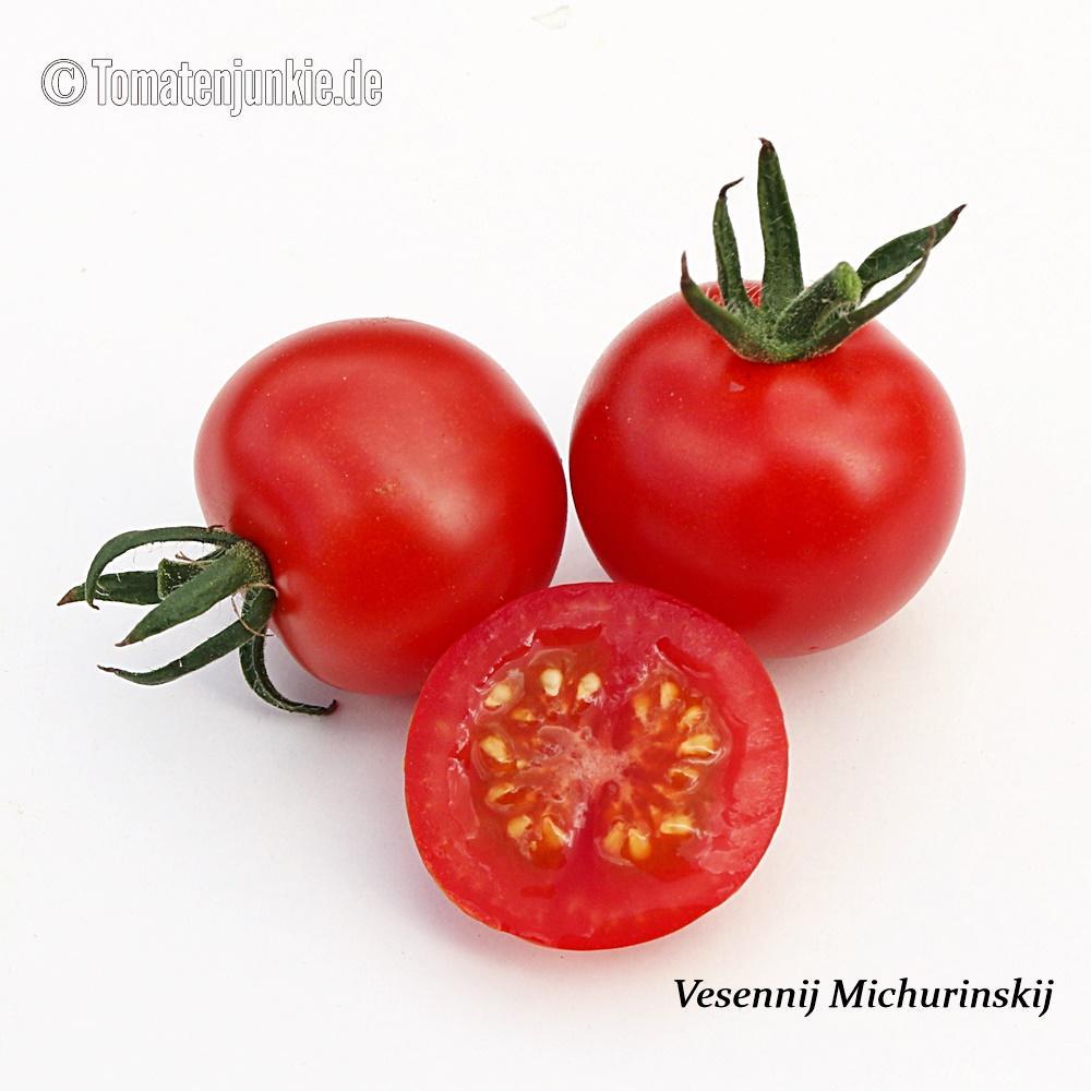 Tomatensorte Vesennij Michurinskij