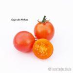 Tomatensorte Gajo de Melon
