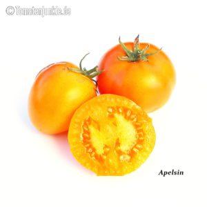 Tomatensorte Apelsin