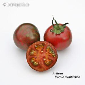 Tomatensorte Artisan Purple Bumblebee