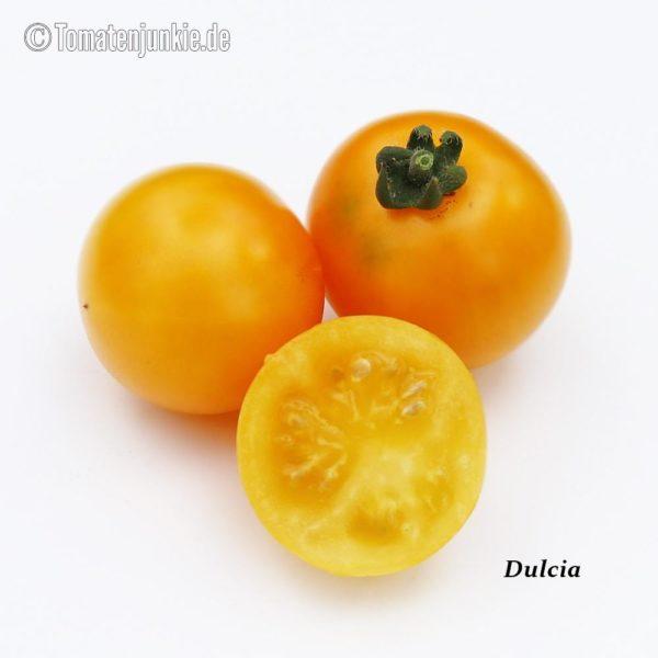 Tomatensorte Dulcia