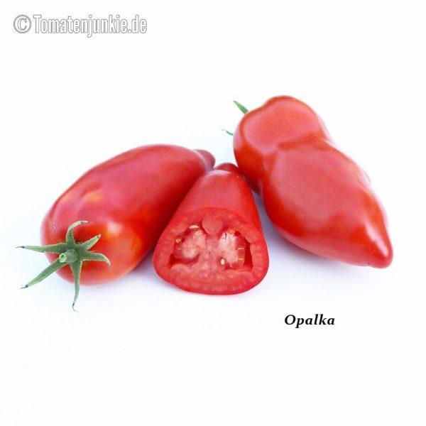 Tomatensorte Opalka