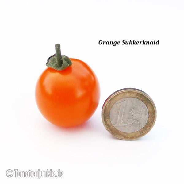 Tomatensorte Orange Sukkerknald