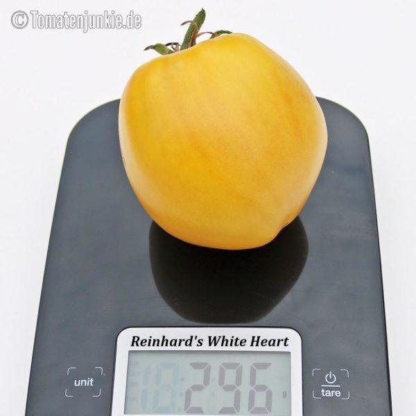 Tomatensorte Reinhards White Heart
