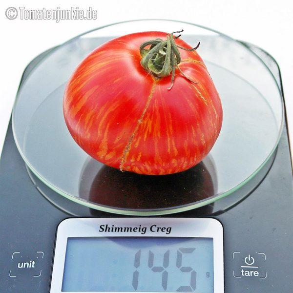 Tomatensorte Shimmeig Creg