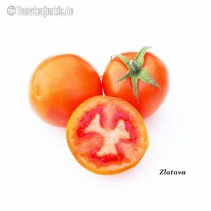 Tomatensorte Zlatava