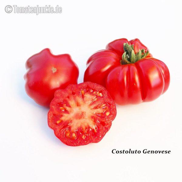 Tomatensorte Costoluto Genovese