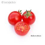 Tomatensorte Huberts Beste