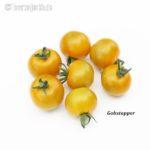 Tomatensorte Gobstopper