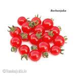 Tomatensorte Barbanjaka